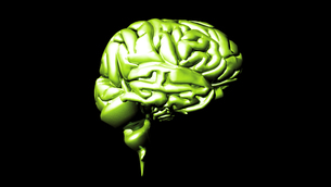 highly detailed animation of a human brain FYI00488452
