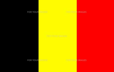 Belgian Flag FYI00488470