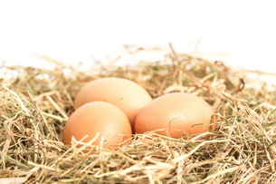 Three eggs nestled in straw FYI00488539
