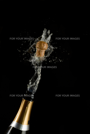 Champagne cork poppins FYI00488671