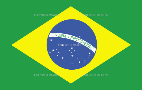 Brazilian Flag FYI00488698