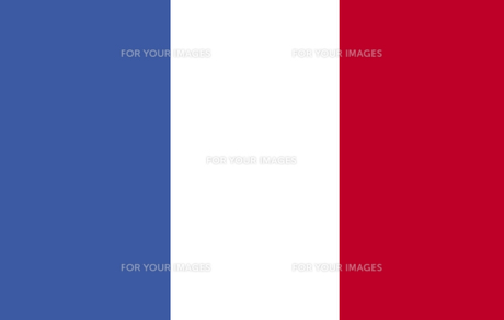 French Flag FYI00488715
