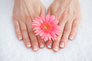 Flower on french manicured fingers at spa center FYI00488760