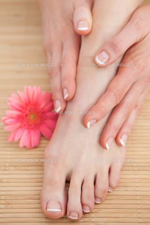 French nail treatment at spa center FYI00488763