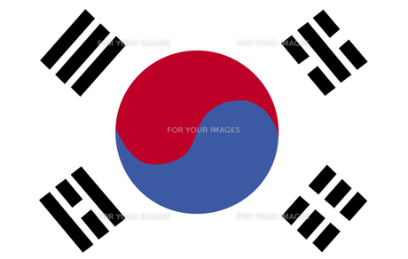 South Korean Flag FYI00488780