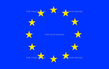 European Union Flag FYI00488791