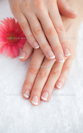 Flower with french manicured fingers at spa center FYI00488814