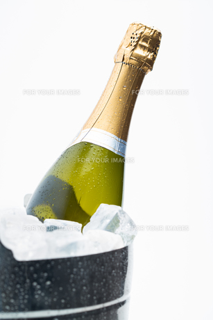 Champagne cooling in ice bucket FYI00488830