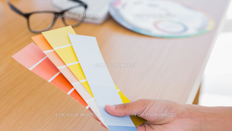 Hand holding colour charts FYI00488880