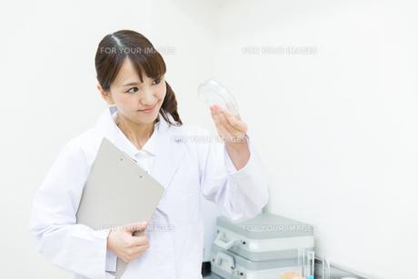 白衣の研究員 FYI00491191