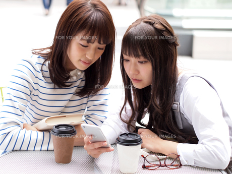 スマホを眺める2人の女性 FYI00495492