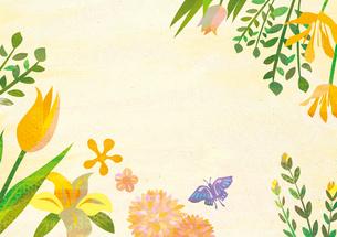 花と蝶々 FYI00497190
