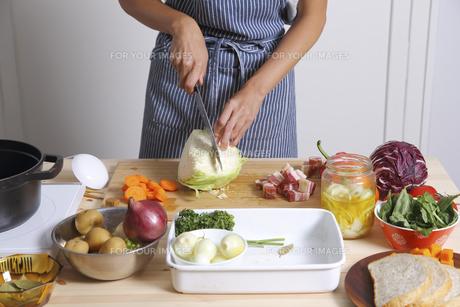 キャベツを切る女性 FYI00497266