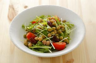 水菜とミックスビーンズのサラダ FYI00497275