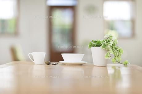食卓に並んだコーヒーカップ FYI00497324