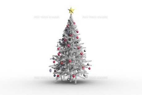 holiday FYI00519290