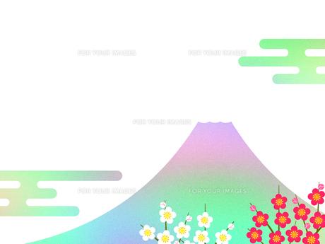富士山と梅の花 FYI00542306