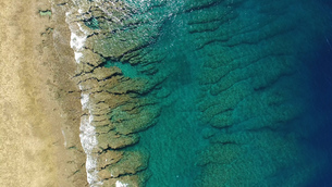 沖縄の珊瑚 FYI00542552
