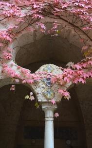 イタリアのラヴェッロの街中風景 FYI00543068