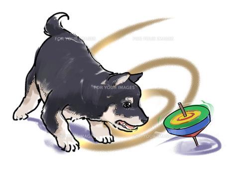 コマと犬 FYI00543484