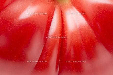 完熟トマト FYI00543911
