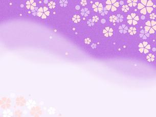 桜の花模様 コピースペース FYI00545022