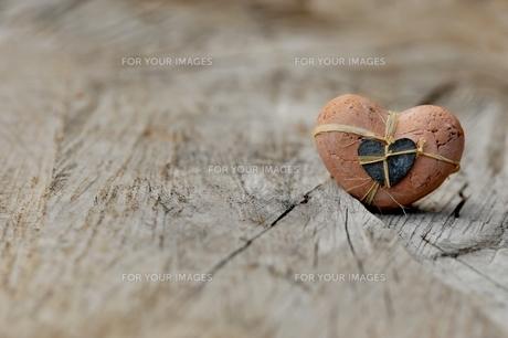 love FYI00549101