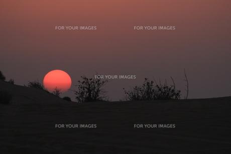 砂漠の夕景 FYI00551820