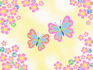 桜の花と蝶 FYI00551854