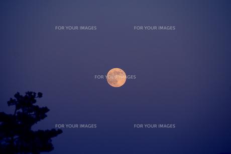 夜空と満月 FYI00559477