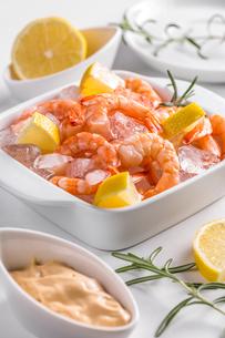 shrimp FYI00562010