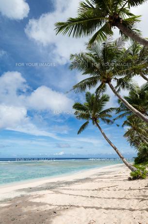 グアムのビーチ FYI00566761