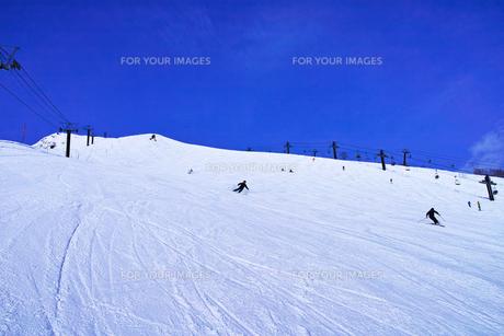スキーゲレンデとシュプール Fyi00583043 気軽に使える写真