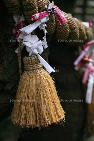 神社 FYI00598407