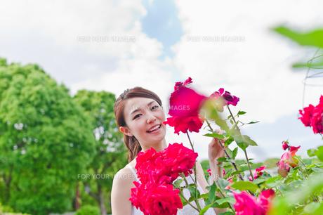 花の前に立つ女性 FYI00603507