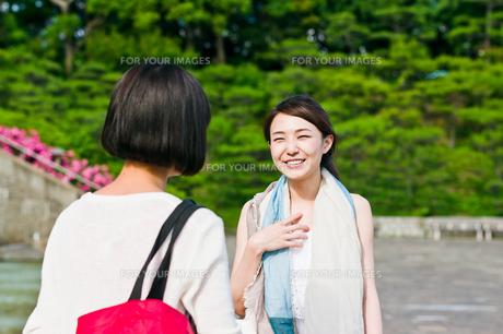 会話する女性二人 FYI00603548