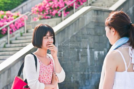 会話する女性二人 FYI00603552