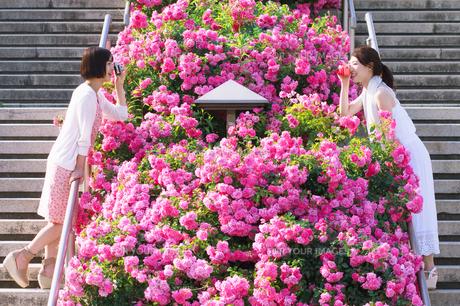 花壇越しに会話する女性 FYI00603558