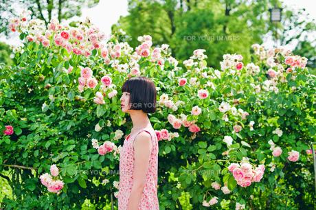 花の前に立つ女性 FYI00603595
