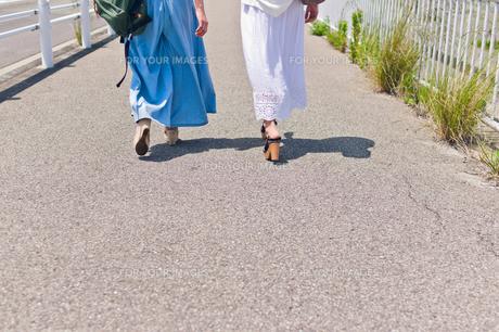 歩く女性二人の足元 FYI00603644