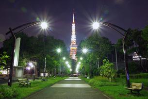 芝公園4号地と東京タワー FYI00619787