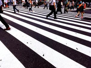 新宿散歩5 FYI00627815