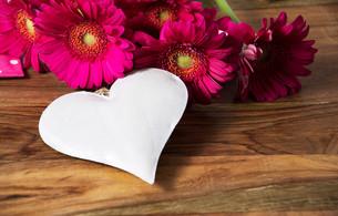 love FYI00639342