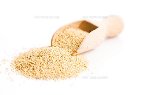White poppy seeds FYI00640976