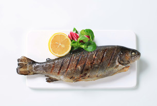 Grilled trout FYI00642693