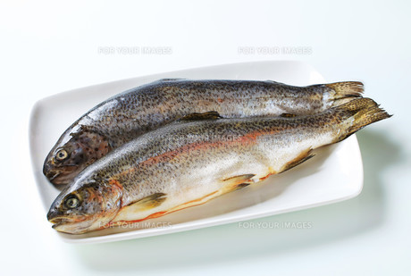 Two fresh trout FYI00642706