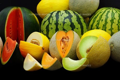 melons FYI00643829