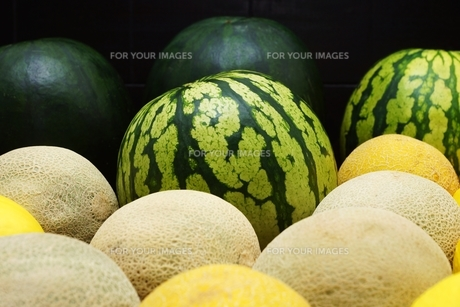 melons FYI00643831