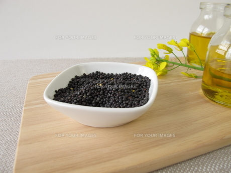 rapeseed and rapeseed oil FYI00645346