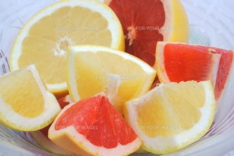 カットフルーツ グレープフルーツ2種 FYI00655845